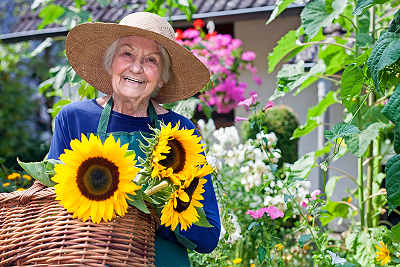 older woman with arthritis tending her garden